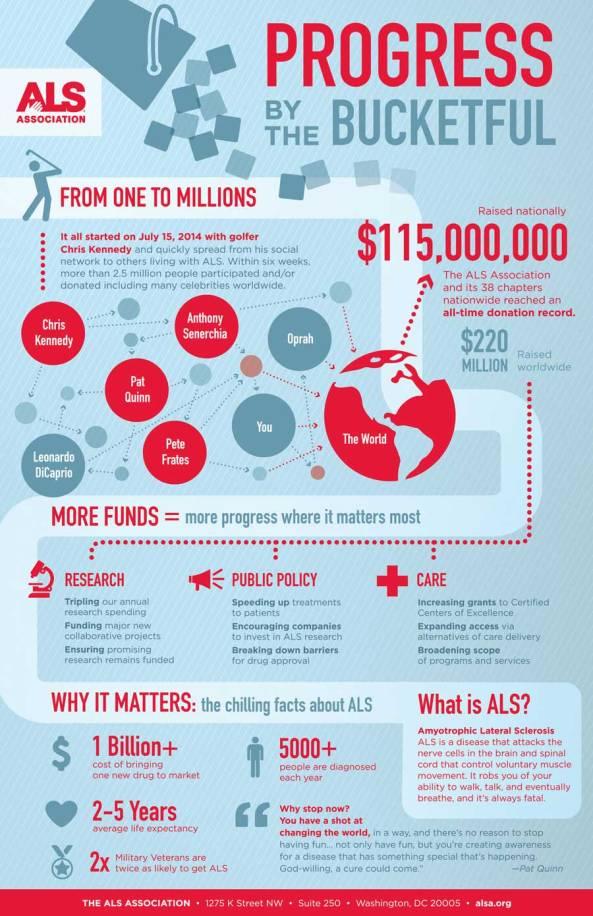 Non Profit Campaign Infographic